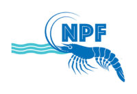 Northern Prawn Fisheries